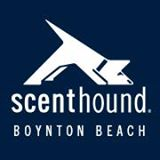 Free Basic Dog Care Class at Scenthound