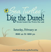 Sea Turtle Day Festival 2018