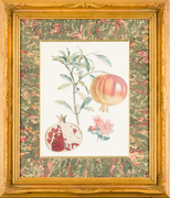 """Botanicals, Antique Engravings and Lithographs"" Opening Night Reception"