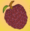 Rare Fruit Council Annual Tropical Fruit Tree and Plant Sales