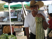 USC Farmers Market Every Tuesday 11 a.m. to 7 p.m.