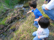 Our Day Outside!(0-5 Yrs): Butterflies Flutterby!