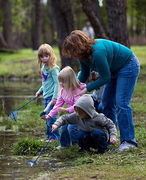 Project Learning Tree: Environmental Experiences for Early Childhood