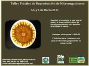 TALLER PRÁCTICO DE REPRODUCCIÓN DE MICROORGANISMOS