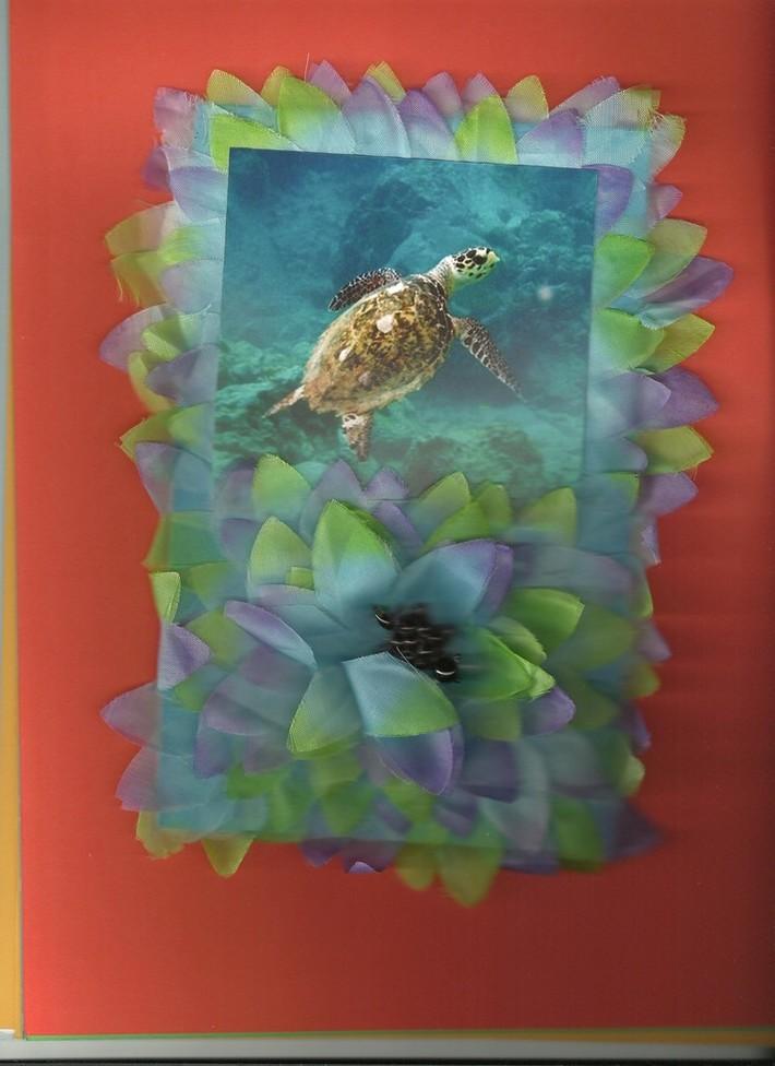 Tortuga marina 3D