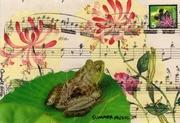 Postcard for Coralette #4