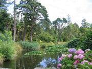 Fota  & Gardens