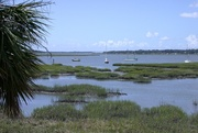 Lady's Island