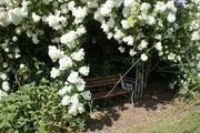 Boyne Valley Paintout Listoke Gardens