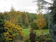 Paintout in Maria Levinge's Garden, near Clohamon, Wexford.