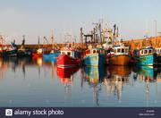 AITO Day 3: Kilmore Quay
