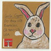 envelop for my rabbit sister