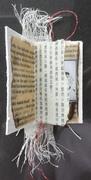 Christopher Skinner (UK) - Lestaret - The New Alexandrian Library Small Book Collection (Cheryl Penn)