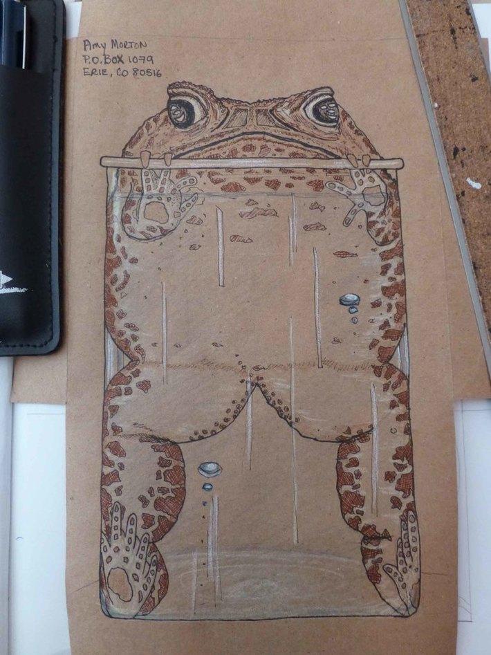 Frog in a beaker envelope