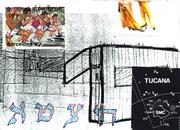 Tucana Collage