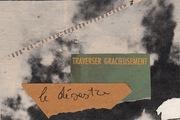 "Cinzia Farina - ""traverser gracieusement le désastre"""