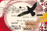 "Cinzia Farina - ""Sono dunque volo"" -"