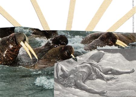 Walrus Rush