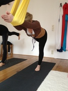 Aerial Yoga Einsteiger Workshops
