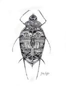l'insecte tatoué.