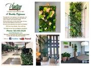 PLANTIQUE Plantscaping company, Palm Beach County Florida