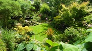 Open Garden, Crouch Hill