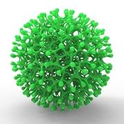 Porites sphere