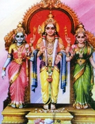 Swamy  with his Divine Consorts Valli and Deivayanai