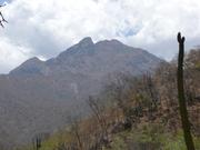 Sierra de Laguna World Heritage Bio-Reserve