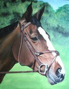 Pet Portrait Horses