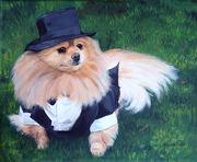 "Pet Portrait Painting Sample ""Longhair Chihuahua"""