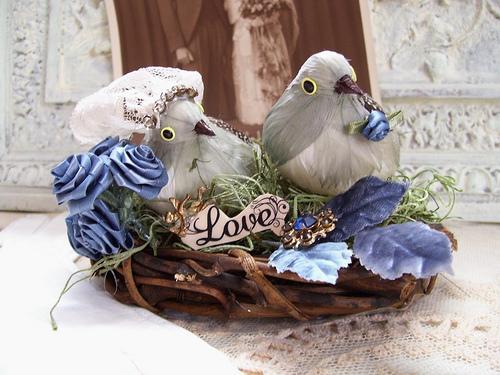 Mr and Mrs Bluebird
