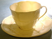 shell cup saucer