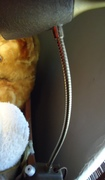 Mid-Century Eagle gooseneck headboard light