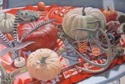 pumpkins 40 x 60 Margie Guyot