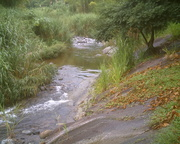 Pictures taken in Jamaica and Jayuya, Boriken 070