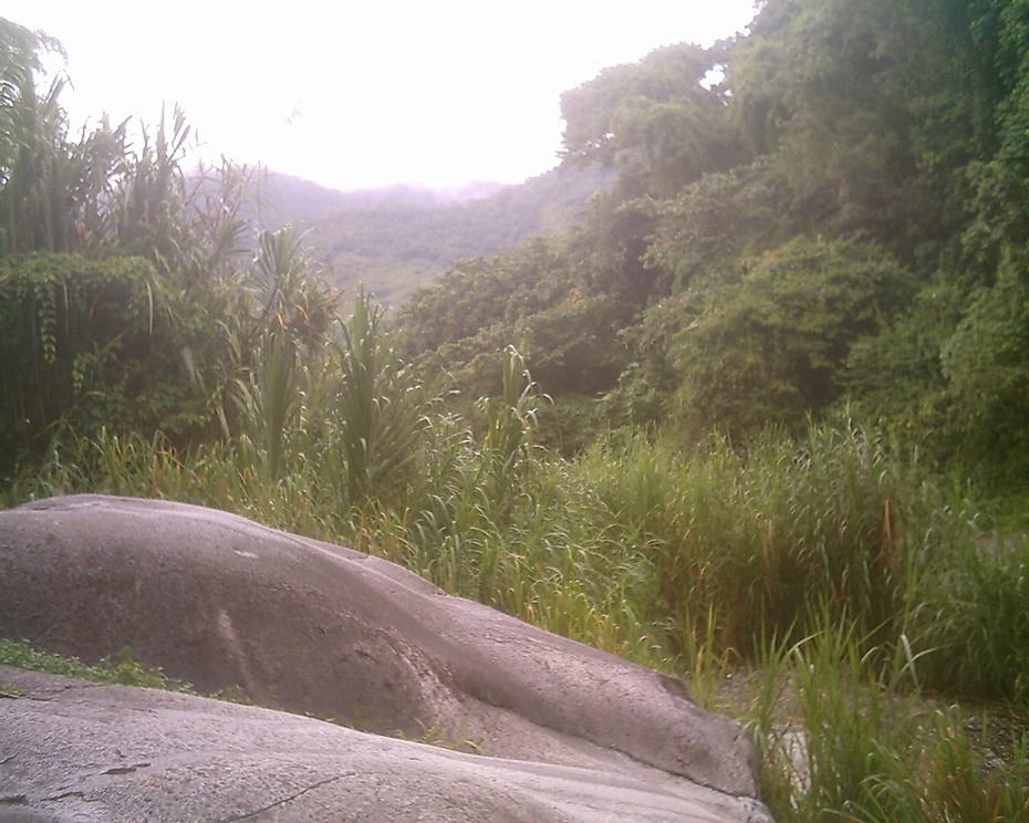 Pictures taken in Jamaica and Jayuya, Boriken 071