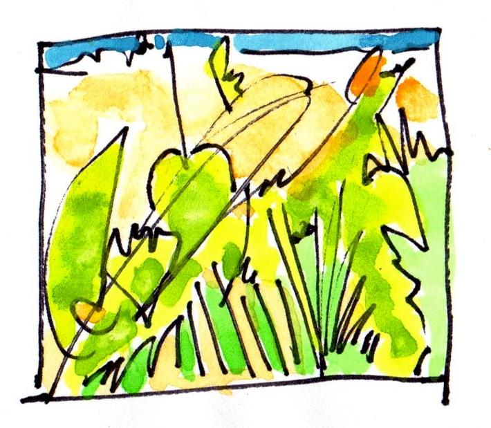 quick green sketch