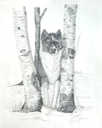 Ihasa In The Woods