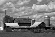 Farm #9