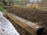tilled and composted
