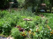 golden spiral zen garden