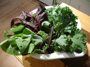 kale, beets, and bok choy