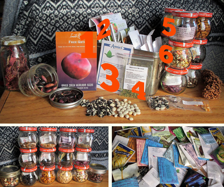 What's in Lizzie's Seed Stash