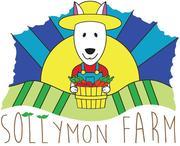 Sollymon Farm