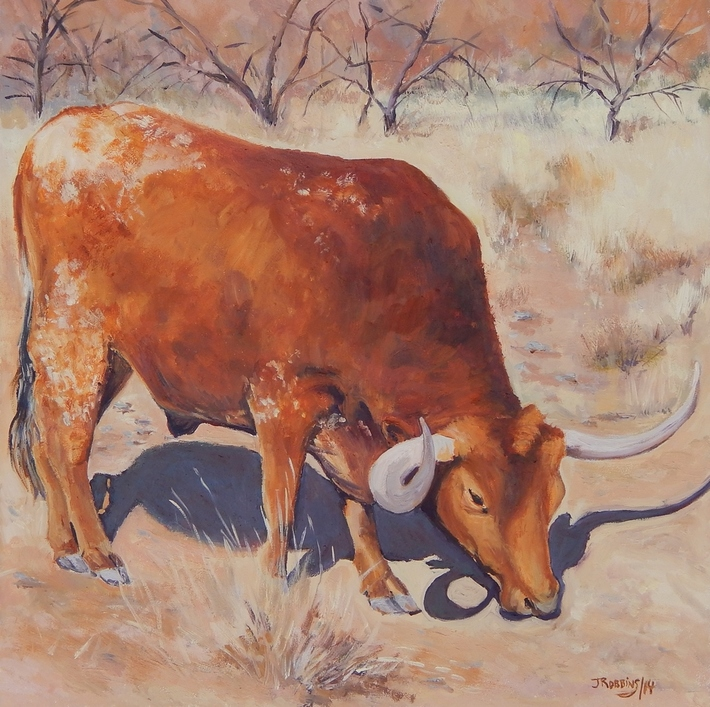 Red Longhorn  Grazing 12x12 inches