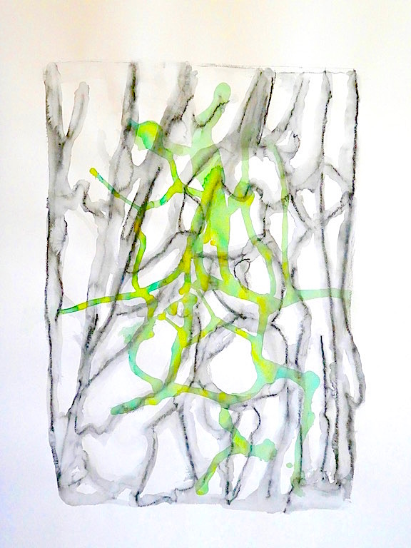 Tree Bark #6