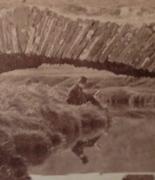 oval albumen detail