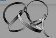 MN-tapeworm-weaving
