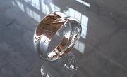 Klein Algorithm Ring